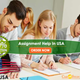 USA Assignment Help & Online Homework Writing Services