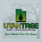 Utah Tree and Landscaping