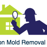 Hoschton Mold Removal Experts