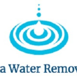 Lithonia Water Removal Pros