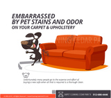 Pet Stain Cleaning Certified, Licensed, Insured - Residential and Commercial , Professional Carpet Cleaning Services,