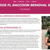 Rockledge Raccoon Removal