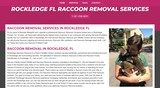 New Album of Rockledge Raccoon Removal