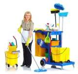 Profile Photos of Cleaning Services Enfield
