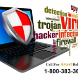 Avast Antivirus Support Phone 1-800-383-368 Number Australia- For Fast