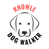 Knowle Dog Walker, Solihull