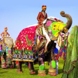 Travel Agency In Jaipur - Colourful Indian Holidays