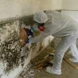Mold Remediation Columbus