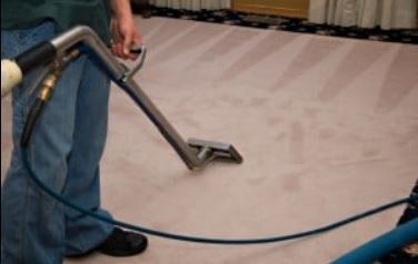 Profile Photos of Mississauga Carpet Cleaner 25 Watline Ave - Photo 1 of 4