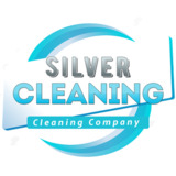 Silver Cleaning