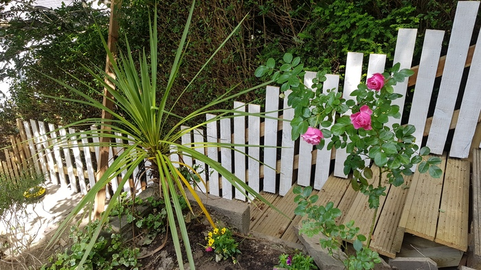 Garden Clearing and Fencing Profile Photos of TEC Plumbing 50 Plymouth Road - Photo 8 of 9