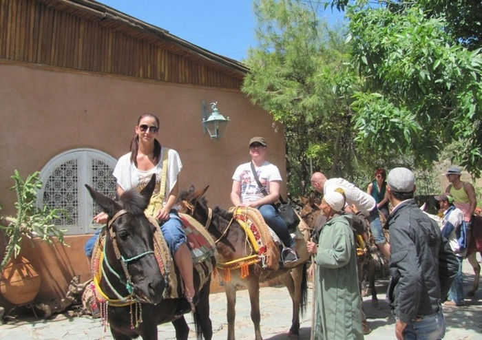 We start our trek in Marigha, a small village at the entrance to the Toubkal National Park, where mules and muleteers are already waiting for us. After having a mint tea, here we go!<br /> http://www.ouirganeguide.com Excursions Mules in Ouirgane, Atlas Mountains  of Ouirgane Guide Ouirgane - Photo 2 of 2