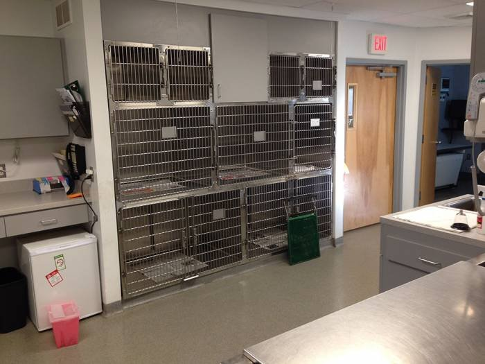 Profile Photos of Pitman Animal Hospital 654 N. Delsea Dr. - Photo 10 of 12