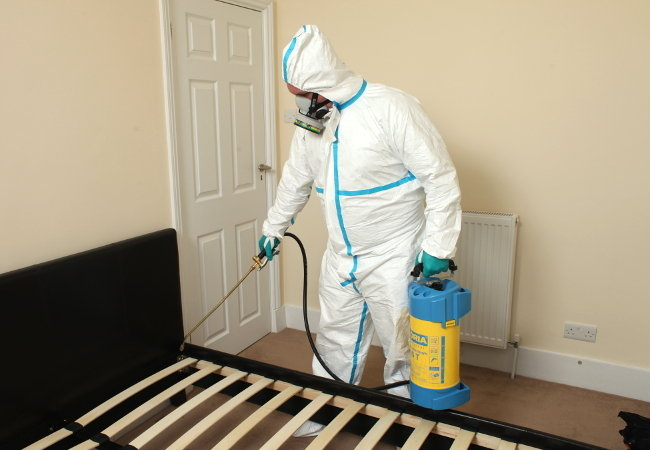 Bed Bug Pest Control Profile Photos of Fantastic Pest Control Birse Crescent - Photo 5 of 5