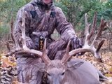 Profile Photos of X Factor Whitetails