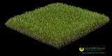 Pricelists of Wonderlawn artificial grass installation