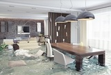 New Album of Water Damage Restoration Company Miami