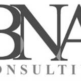 BNA Consulting - Russian Accountant
