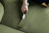 Profile Photos of Canadian Elite Carpet Cleaning