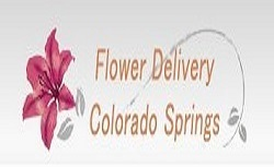 4 of 4 photos pictures view same day flower delivery colorado new album of same day flower delivery colorado springs co send flowers 2560 sonoma dr mightylinksfo