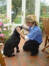 Home Vet Care - stress-free at the end of life.