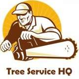 Profile Photos of Tree Service HQ