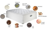 Profile Photos of Back 2 New Mattress Cleaning Perth