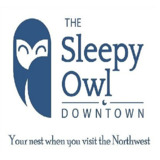 The Sleepy Owl
