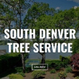South Denver Tree Service