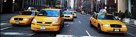 New Album of Fly to Logan Taxi 1703 157 Marion Street - Photo 2 of 3