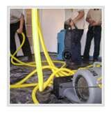 Profile Photos of Carpet Cleaning Los Angeles