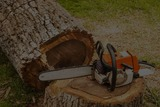 Profile Photos of TJA Tree services | Tree  Removal Adelaide | Tree Pruning