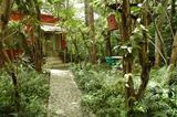 Homestay near Mudumalai Sanctuary, TAMILNADU