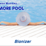 Bionizer Review Beats Any Other Pool System