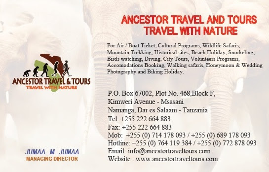 Pricelists of Ancestor Travel & Tours PPF Complex, Kaloleni - Photo 3 of 5
