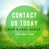 Barrie Tree Care Pros, Barrie