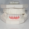 Profile Photos of Dental Crowns Lab