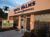Profile Photos of Boca Palms Animal Hospital