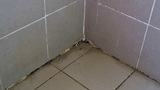 tile cleaning grout cleaning Smyrna GA