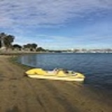 New Album of SD Adventures- Jet Ski & Boat Rental
