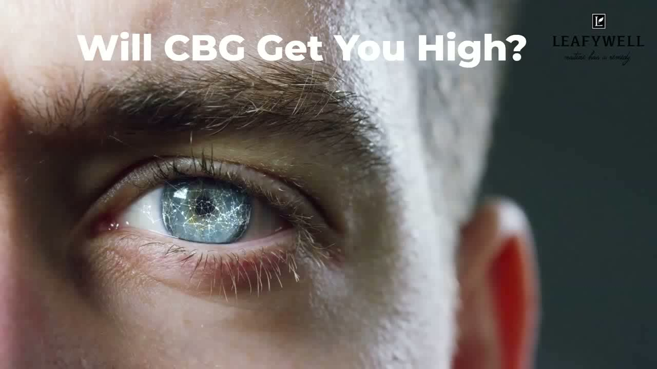 Does CBG get you High.mp4