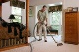Cleaning Services Dartford, 1 Northumberland Avenue, Dartford, WC2N 5BW, 02037341268, http://cleaningservicesdartford.com