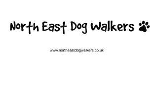 North East Dog Walkers, Darlington