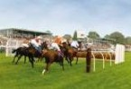 Hereford Racecourse, Hereford