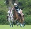 Tidworth Polo Club, Tidworth