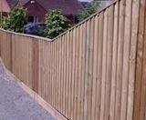 Featherboard fencing suppliers kings Lynn. Call 07712 893277