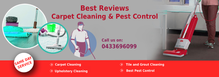 New Album of Best Reviews Carpet Cleaning and Pest Control PO BOX 997 Sunnybank - Photo 1 of 1