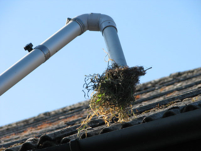 Profile Photos of Gutter Cleaning East Grinstead Lincoln Cottage, Woodcock Hill - Photo 1 of 2