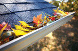Profile Photos of Roof Gutter Cleaning Melbourne