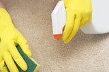 Profile Photos of Cleaning Services Cape Town